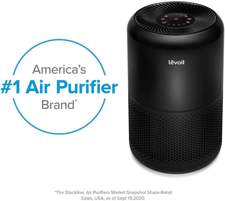 LEVOIT Air Purifier for Home Allergies and Pets Hair Smokers in Bedroom, H13 True HEPA Filter, 24db Filtration System Cleaner Odor Eliminators, Remove 99.97% Dust Smoke Mold Pollen, Core 300, Black
