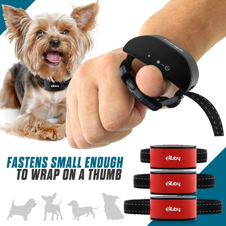 eXuby Friendly Dog Bark Collar w/ Built-in Microphone for Small Dogs - Humane Sound & Vibrations (No Shock) - Only Activates When Your Dog Barks - Advanced Chipset Auto Adjusts Vibration - No Prongs