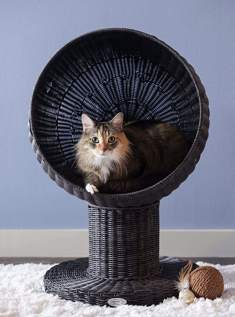 The Refined Feline Curved Shape Kitty Ball Cat Bed with Soft Washable Cushion, Scratch Proof Poly Rattan Bed for Cats and Kittens