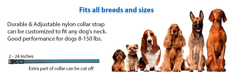 Fits all breeds and sizes