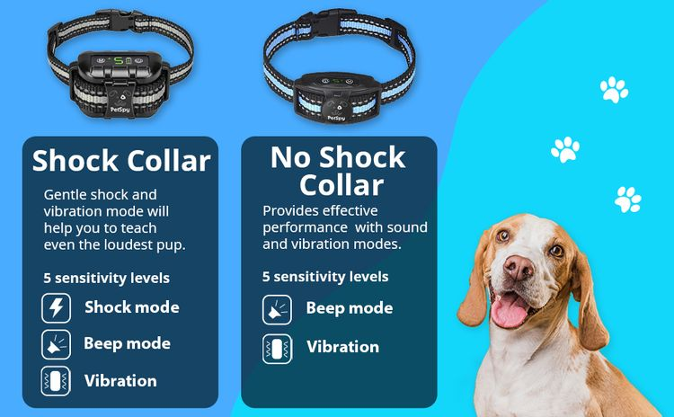 Specifications collars