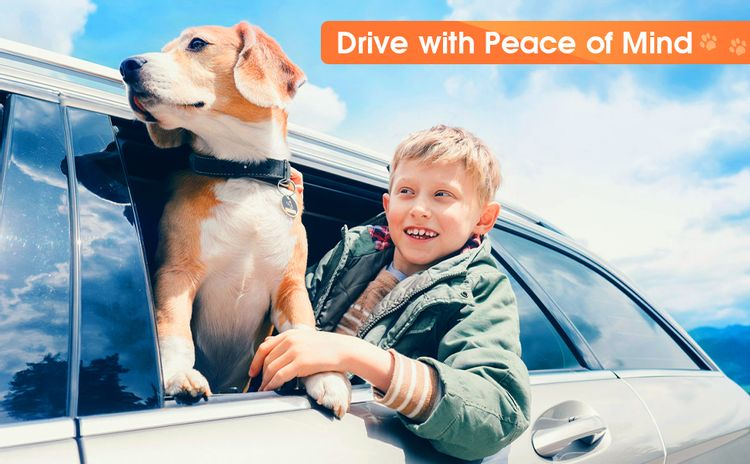 drive with peace of mind