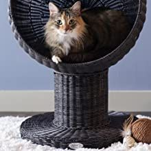 Kitty Ball Cat Bed from The Refined Feline